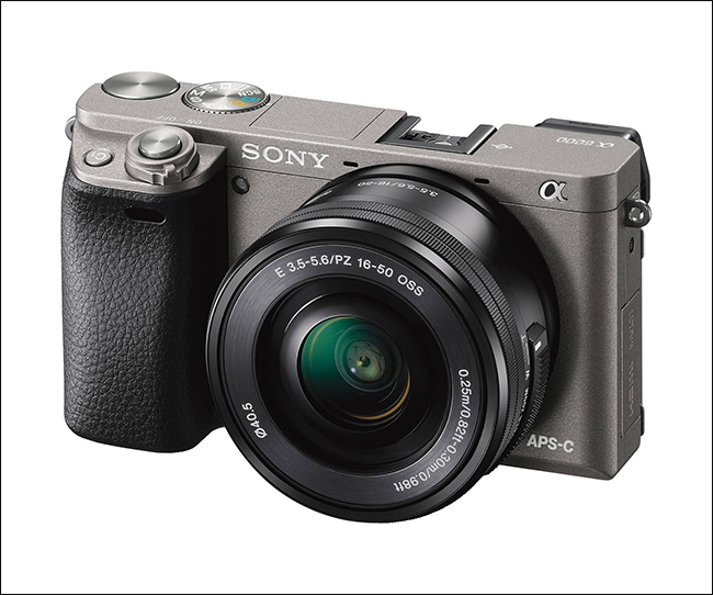 Should You Switch to a Mirrorless Camera?