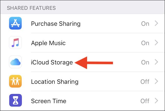 Click iCloud Storage