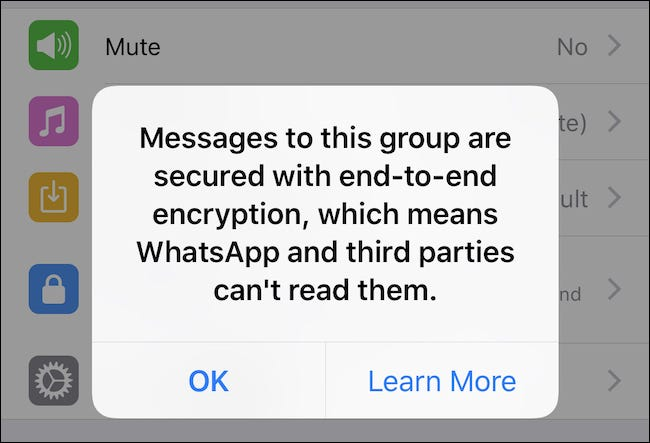 Confirmation of chat encryption