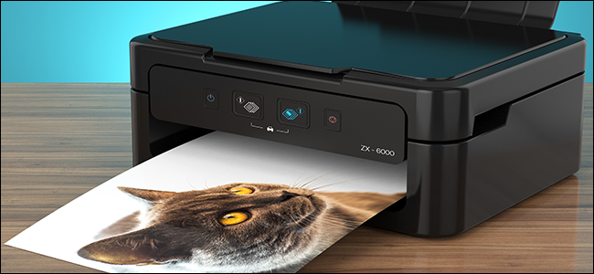 photo of a cat emerging from an inkjet printer