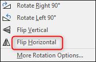 flip horizontally