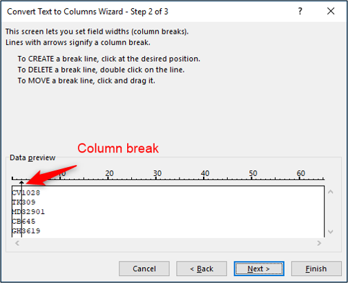 Insert column break in Text to Columns