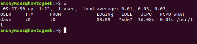 Output from the w command