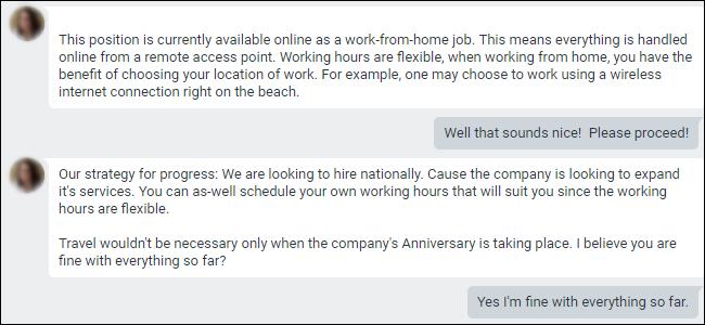 Google Hangouts conversation showing an work from home job offer.