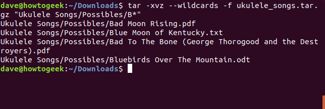 Extracting songs from tar with wildcards