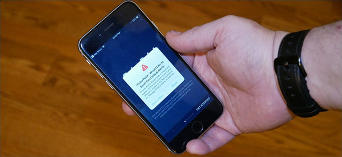 How to turn on critical alerts in iOS 12