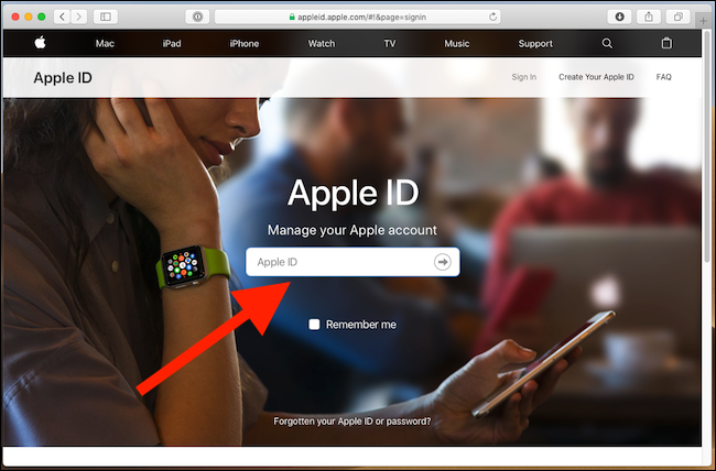Log in at appleid.apple.com.