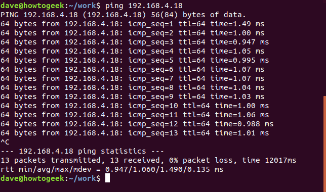 ping in a terminal window