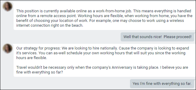 Google Hangouts conversation showing an work from home job offer.