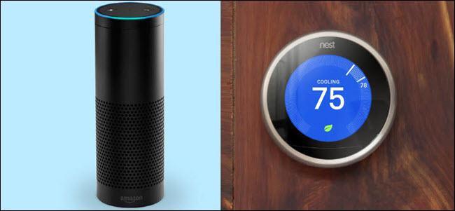 An Amazon Echo next to a Google Nest