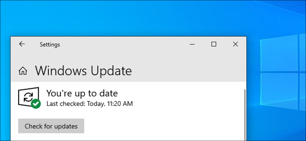 Windows Update's Check for Updates button on Windows 10's May 2019 Update
