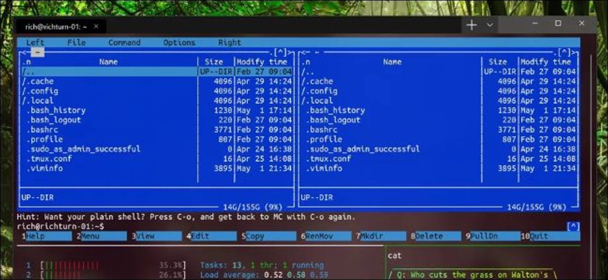 New Windows Terminal showing Linux applications