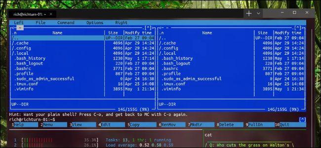 Nuevo terminal de Windows que muestra aplicaciones de Linux
