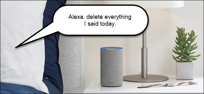 "Amazon echo with speech bubble saying ""Alexa delete everything I said today."""