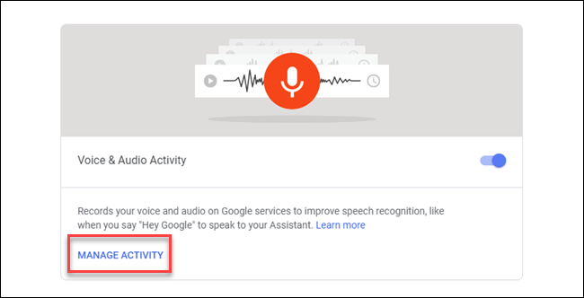 Voice & Audio activity dialog with box around Manage Activity