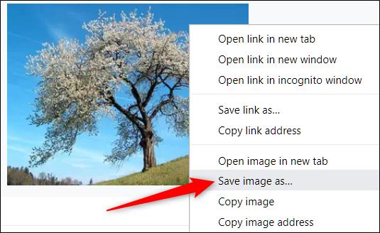 Haga clic con el botón derecho en la imagen, luego haga clic en Guardar imagen como