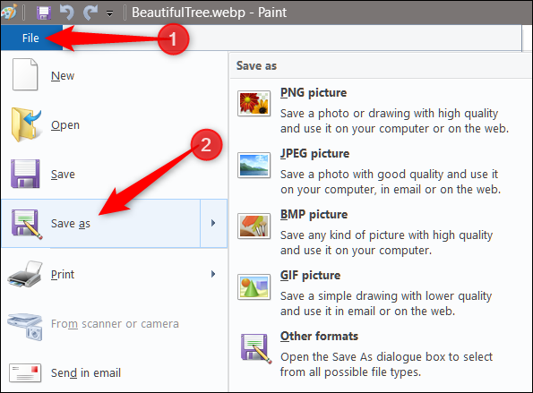 To convert the image, click File > Save As, then select the format you want to save it as