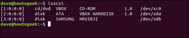 lsscsi output in a terminal widnow