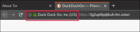 green onion logo in the Tor browser address bar