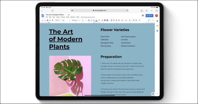 Google Docs in Safari on an iPad