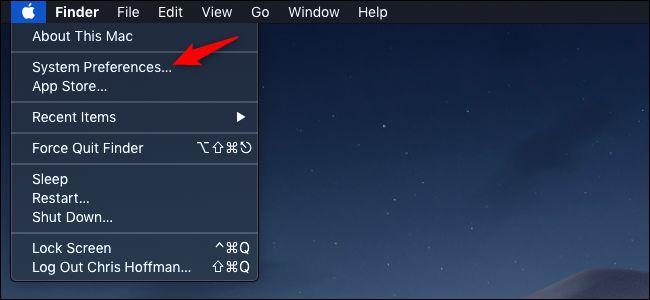 System Preferences option in Apple menu