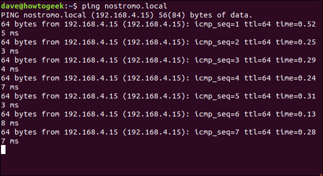 ping output in a terminal window