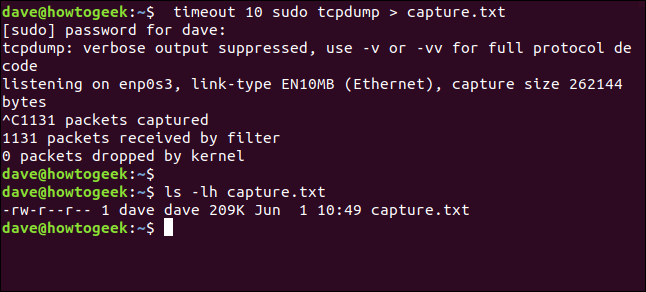 ls -lh capture.txt in a terminal window