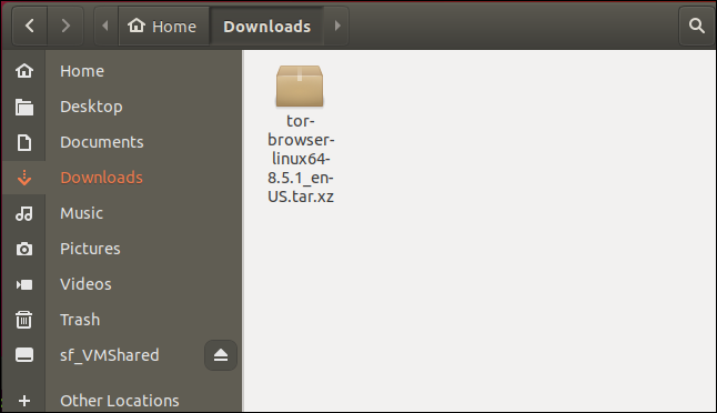 Downloaded file in the downloads directory
