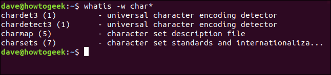 whatis wildcard matches in a terminal window