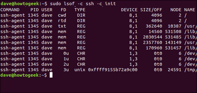 lsof output in a terminal window