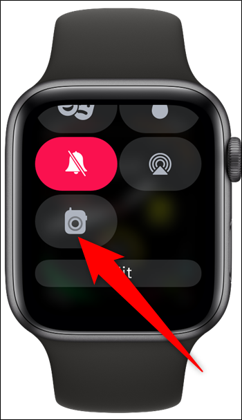 Apple Watch Control Center Walkie Talkie Setting