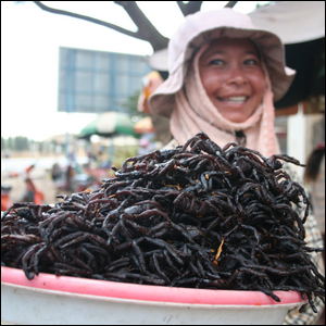 Street vendor selling fried tarantulas on the street in Cambodia