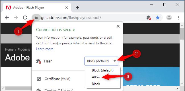 "Click the lock icon, click the ""Flash"" box, and then click ""Allow."""