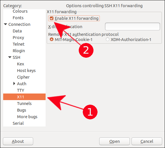X11 Forwarding option