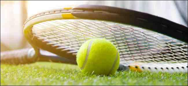 Tennis ball and racket on grass court