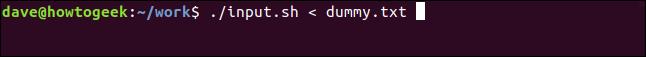 ./input.sh < dummy.txt in a terminal window