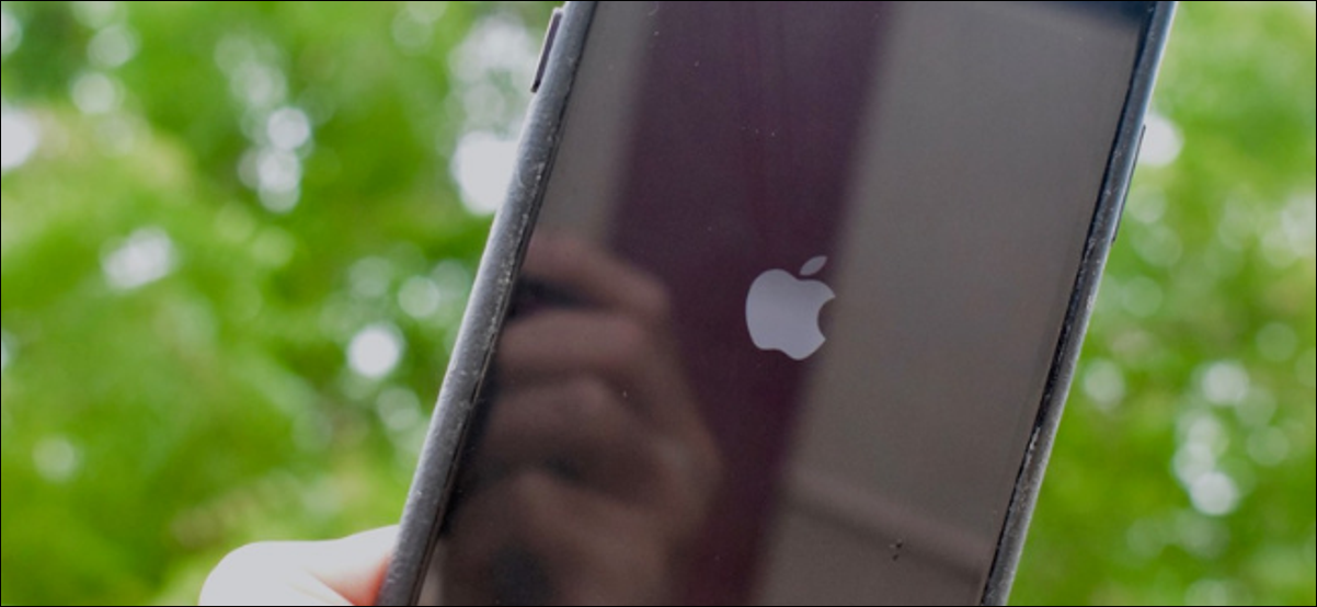 Apple Logo shown on screen restarting after force rebooting iPhone