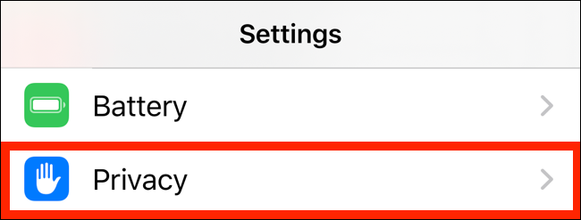 Tap on Privacy from Settings app