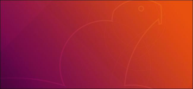 "Ubuntu 18.04 LTS ""Bionic Beaver"" default wallpaper"