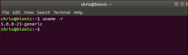 "uname command showing Linux kernel 5.0 running on Ubuntu ""Bionic Beaver"""