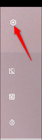 Click the Settings cog to change a few of the Camera settings.