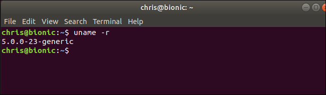 "uname command showing Linux kernel 5.0 running on Ubuntu ""Bionic Beaver"""