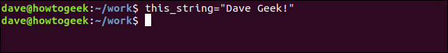 """this_string='Dave Geek!'"" command in a terminal window."