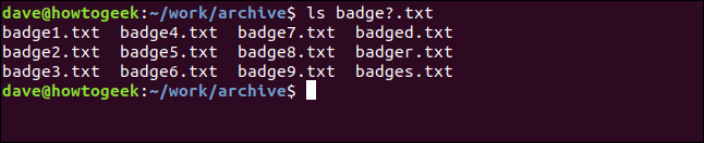 "The ""ls badge?.txt"" command in a terminal window."