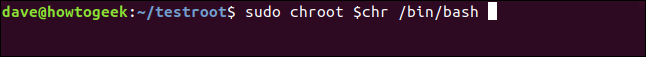 sudo chroot $chr /bin/bash in a terminal window