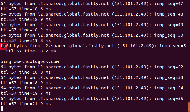 fg command mixed in with the output from ping in a terminal window
