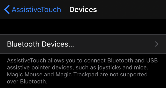Pairing a Bluetooth Mouse in iOS 13 (iPadOS 13)
