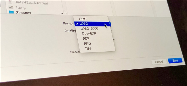 macOS Preview app showing options for converting images between PNG, JPG, TIFF and more