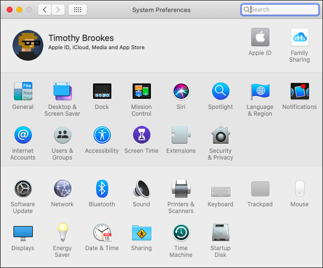 The System Preferences pane in macOS Catalina.