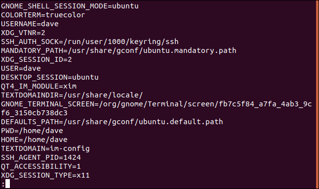 A list of active environment variables in a terminal window.